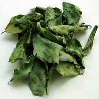 Fresh, dried & preserved vegetables Manufacturer
